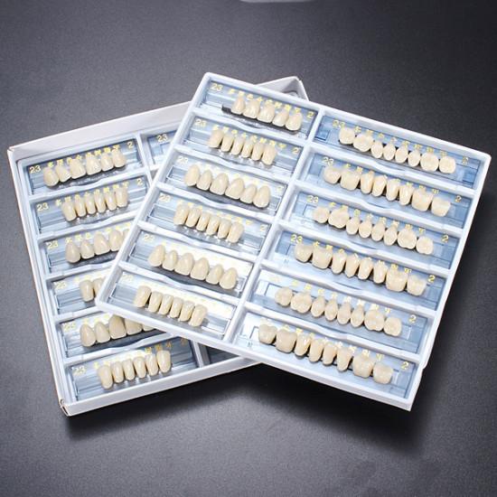 Acrylic Resin Denture Dental Teeth Shade A2 in An Red Box Oral Care