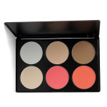 6 Color Face Cosmetics Blusher Powder Makeup Concealer Palette
