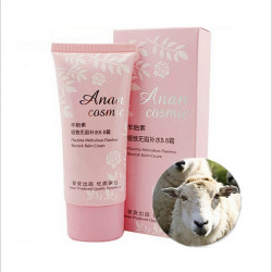 Anan Placenta Meticulous Flawless Concealer Blemish Balm BB Cream
