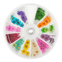 Dry Dried Flower Nail Art Tips Decoration Wheel