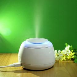 USB Mini Humidifier Air Mist Atomizer Purifier Diffuser