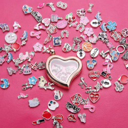 50pcs Mixed Alloy Floating Charms For Living Glass Locket DIY