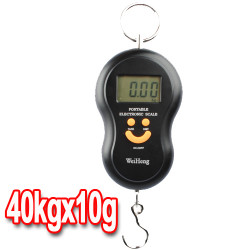 Digital Hanging Luggage Fishing Weight Scale