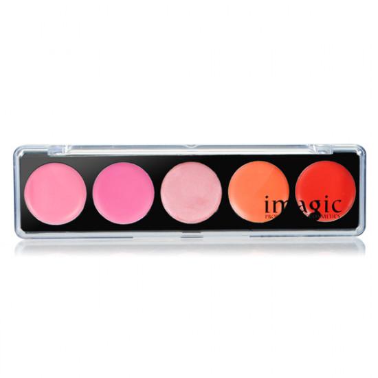 IM 5 Colors lipstick Lip Gloss Palette 2021